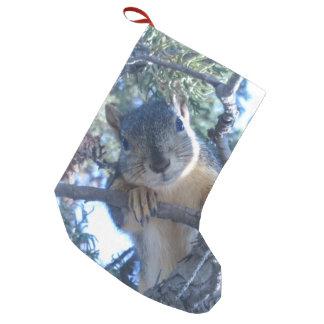Calcetín Navideño Pequeño Ardilla en árbol -