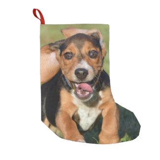 Calcetín Navideño Pequeño Funcionamiento loco del perrito del beagle