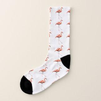 Calcetines del flamenco que marchan