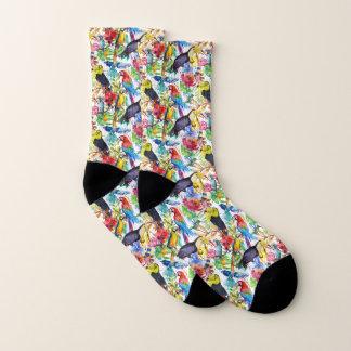 Calcetines Loros coloridos de la acuarela