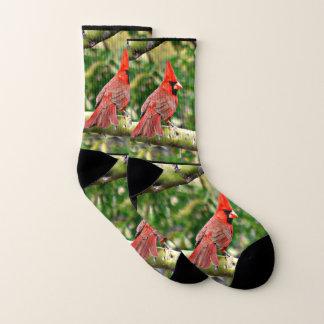 Calcetines unisex cardinales de Sonoran