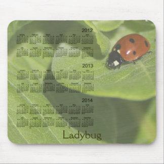 Calendario 2012-2014 de la mariquita Mousepad Alfombrilla De Ratón