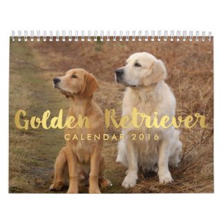 Calendario 2016 del golden retriever sus fotos de
