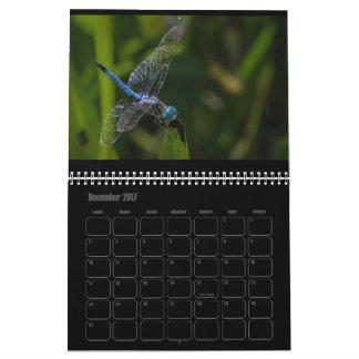Calendario 2017 de la libélula