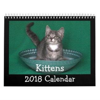 Calendario 2018 del gatito