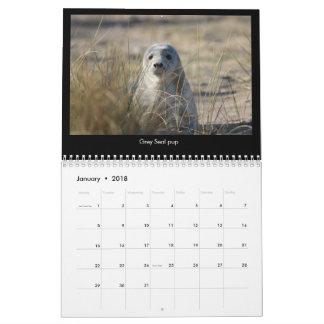 Calendario costero 2018 de la fauna de Norfolk