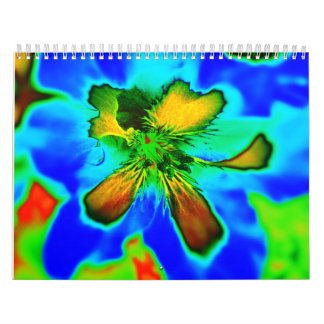 Calendario de arte Colorful Life