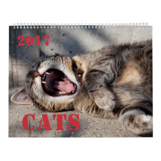 Calendario de los gatos