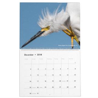 Calendario De Pared 12 pájaros para la fotografía 2018 de la espina