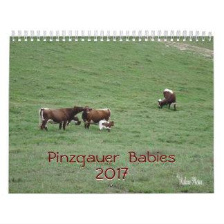 Calendario De Pared Año 2017 del Calendario-personalizar de los bebés