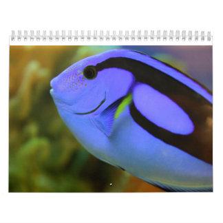 Calendario De Pared El acuario