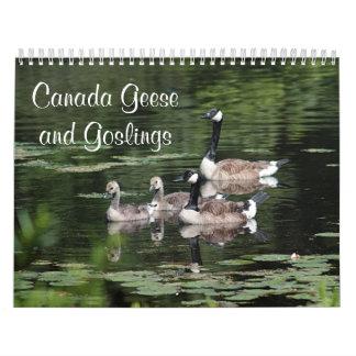 Calendario De Pared Gansos y ansarones de Canadá