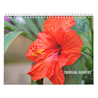 Calendario Flores tropicales