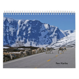 Calendario Reno, caribú/