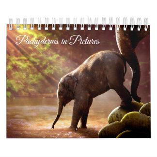 Calendarios Fotografías hermosas del elefante