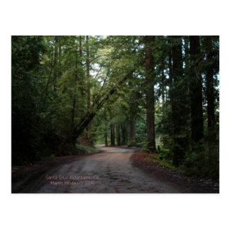 California sazona - camino de las secoyas - la pos postales