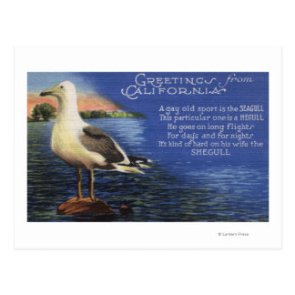 CaliforniaGreetings de, poema de la gaviota Postal