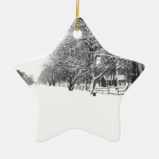 Calle de la conferencia en el pleno invierno adorno navideño de cerámica en forma de estrella