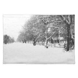 Calle de la conferencia en el pleno invierno manteles individuales