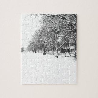Calle de la conferencia en el pleno invierno rompecabezas con fotos