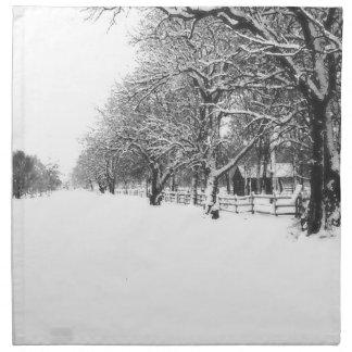 Calle de la conferencia en el pleno invierno servilletas imprimidas