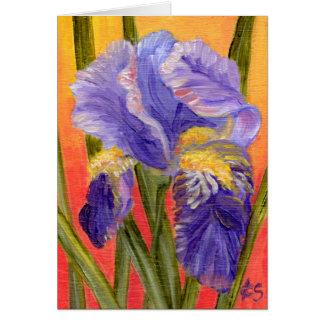 Calor del iris tarjeta pequeña