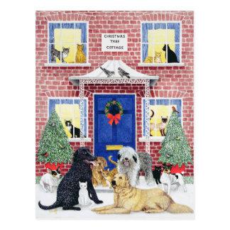 Calor del navidad postal