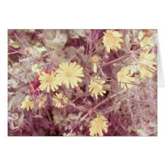 Calor del verano, flores salvajes amarillas tarjeta pequeña