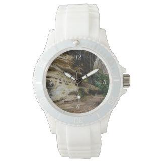 Calzada alineada pen¢asco reloj
