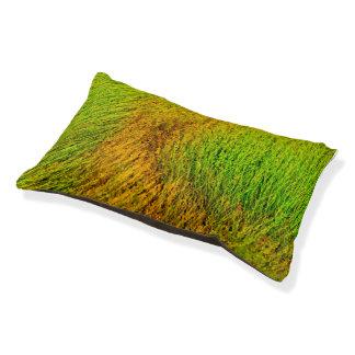 Cama interior herbosa del perro