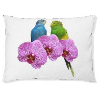Cama Para Mascotas Budgie con la orquídea púrpura