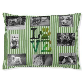 Cama personalizada verde del perro del amor de la
