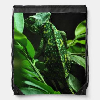 Camaleón verde en mochila del lazo de las hojas
