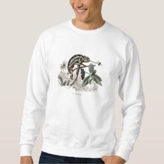 Camaleones retros del lagarto del camaleón de los sudadera