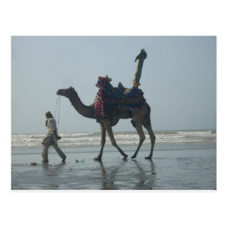 Camel.JPG tribal costero Postal
