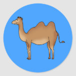 Camello lindo pegatinas