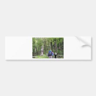 Caminando a través de árboles, Torres del Paine Pegatina Para Coche