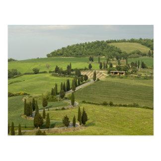 Camino de Pienza a Montepulciano, Postal