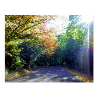 Camino de Portland, Oregon a la rosaleda Postal