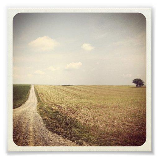 Camino del campo fotos