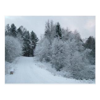 camino nevoso Estonia de la alegría del invierno Postal