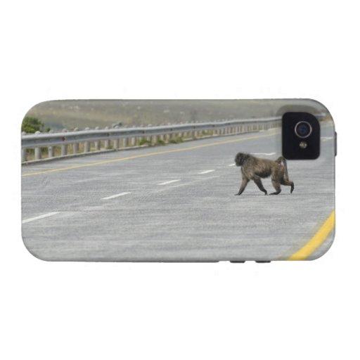 Camino solo de la carretera de la travesía del bab vibe iPhone 4 carcasa