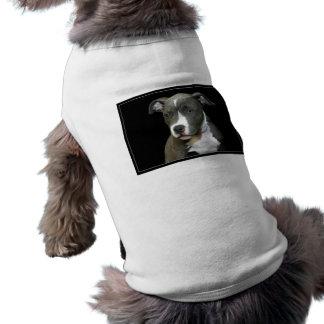 Camisa azul del perro de perrito de Pitbull Camiseta Sin Mangas Para Perro