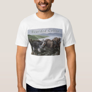 Camisa barbuda del collie