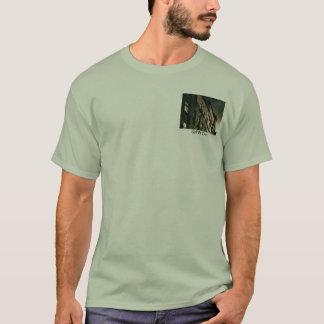 Camisa de la suciedad del FW