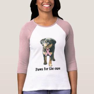 Camisa de las señoras del cáncer de pecho de