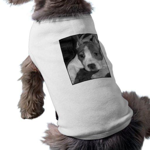camisa del perro de perrito del pitbull ropa de mascota