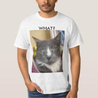 Camisa divertida del gato