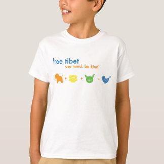 Camisa libre del jaspe de Tíbet
