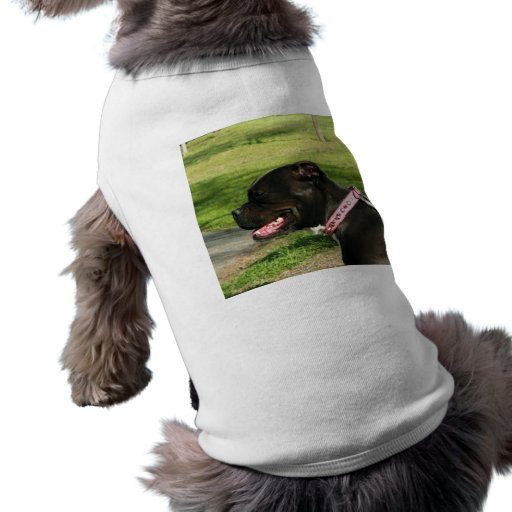 Camisa negra del perro del pitbull camisetas de mascota